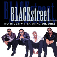 Blackstreet - No Diggity (Vinyl LP)