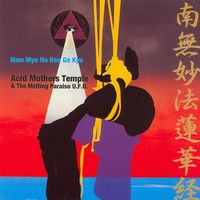 Acid Mothers Temple & The Melting Paraiso U.F.O. ‎– Nam Myo Ho Ren Ge Kyo (Vinyl LP)